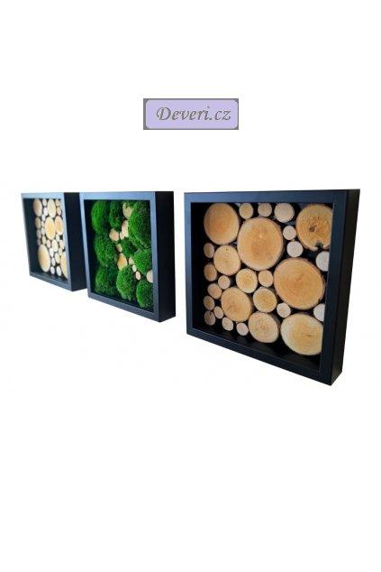 Obrazy 3 rámečky mech dřevo 25x25cm různé barvy (1)