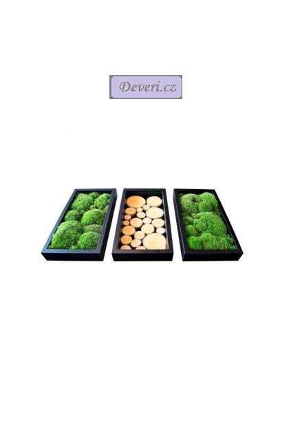 Obrazy 3 rámečky mech dřevo 20x37cm různé barvy (2)