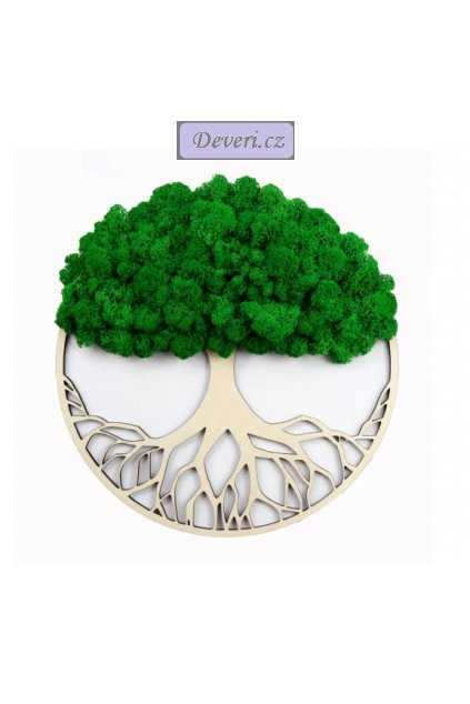 Obraz strom s mechem 60cm zelený (2)