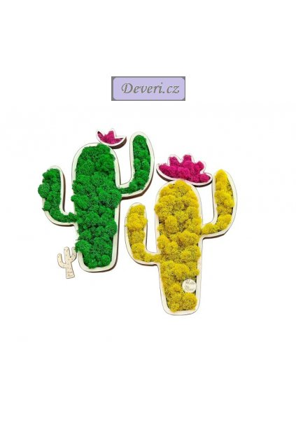 Živý obraz kaktus 30cm různé barvy (3)