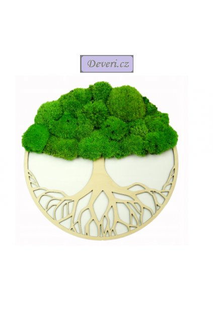 Obraz strom s mechem 1m zelený