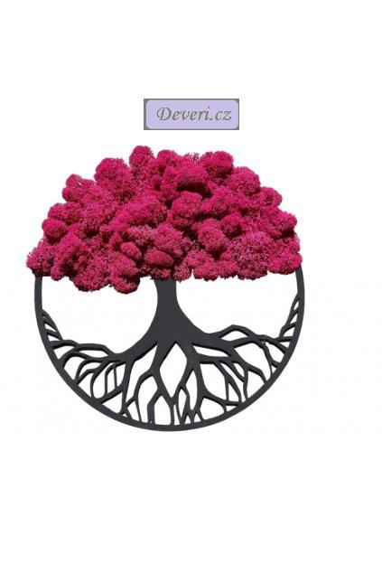 Obraz strom s mechem 50cm fuchsiový