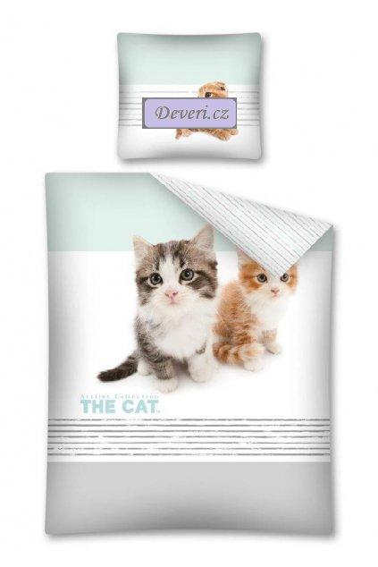 CAT 14 DC