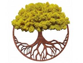 Obraz strom s mechem 50cm žlutý (2)