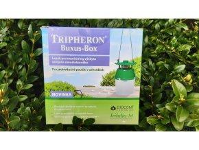 tripheron buxus 1