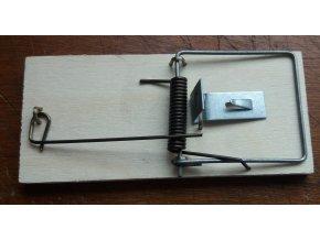 Dřevěná pastička na myši