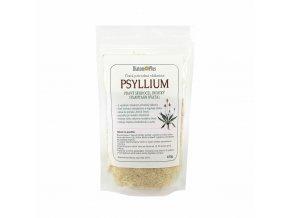 Psyllium cesko