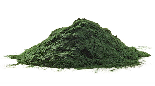 Chlorella pyrenoidosa bio prášek pro zvířata 100gr