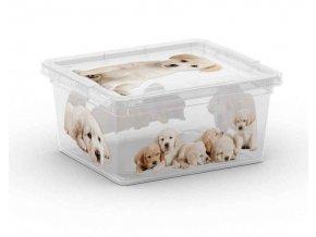 Box s potlačou šteňatá, XXS