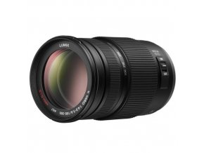 Panasonic Lumix 100-300 mm F4-5.6 OIS