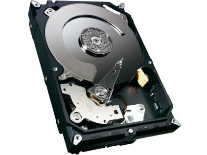 Seagate Cheetah 15K.7 - 600GB