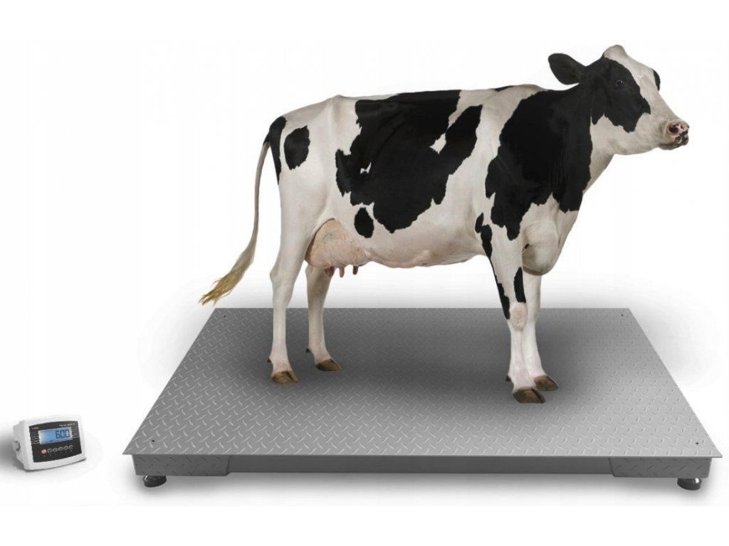 Podlahová váha do 5 000 kg 120x220 cm