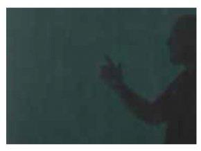 svarovaci zaves transparentni tmave zeleny