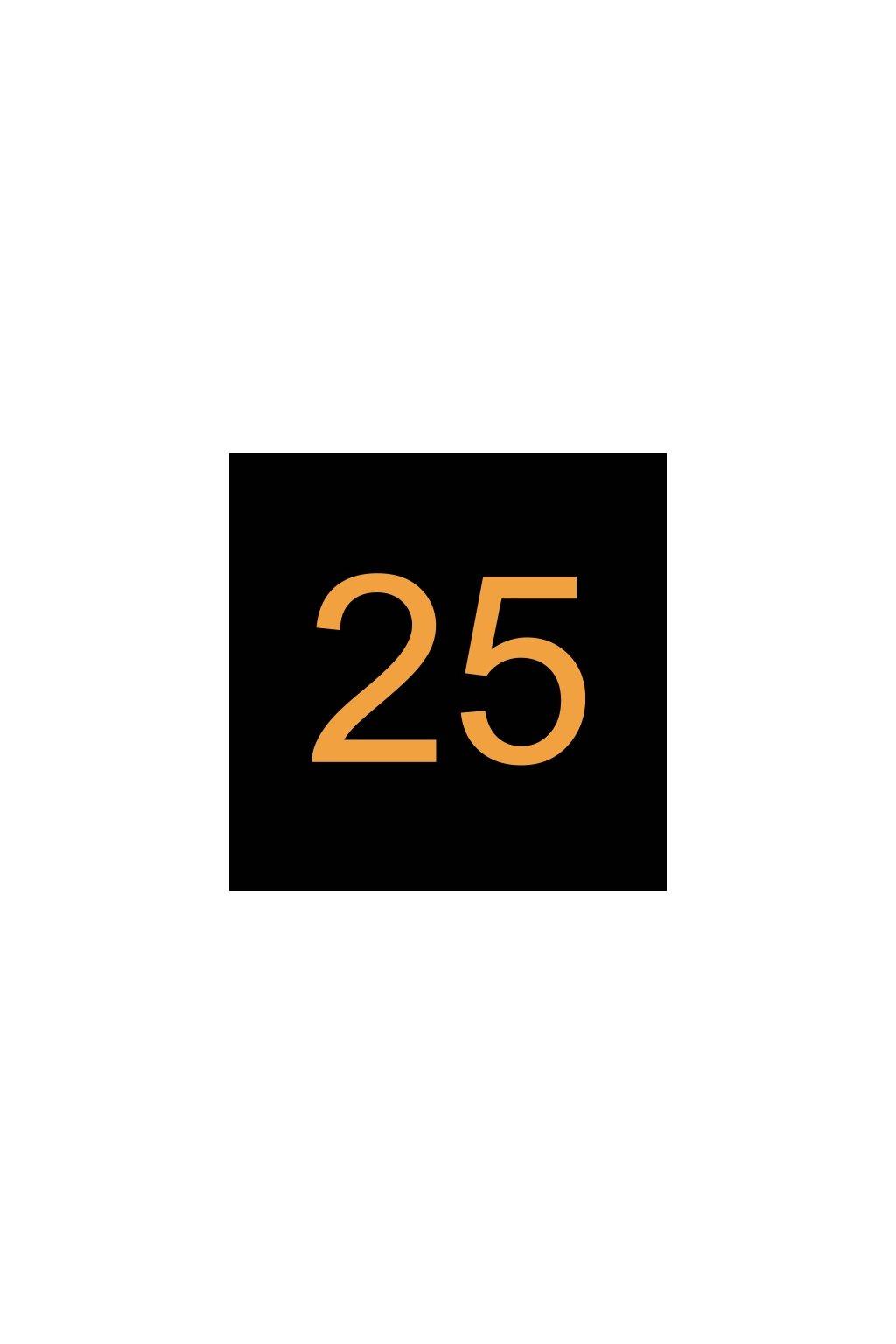 N424480 VÝKONNOSTNÍ ŠTÍTEK 25