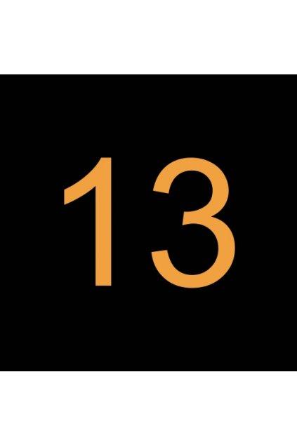 13# N412210 ŠROUB M3.63 X 31.75 T15