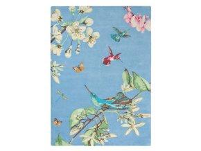 Koberec Wedgwood - HUMMINGBIRD Blue 37808