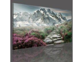 Obraz na plátně hory, vzor 15063