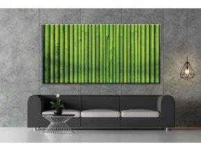 Obraz na plátně bambus , vzor 41357