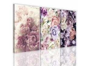 Třídílný obraz na květiny, vzor 41185