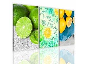 Třídílný obraz na plátně citrus, vzor 41114