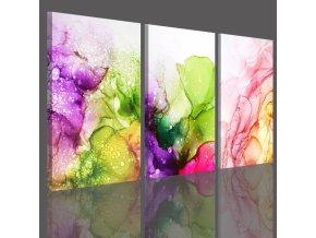 Třídílný obraz na plátně colorful, vzor 41104