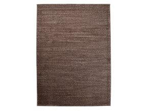 t006a dark brown sari 001
