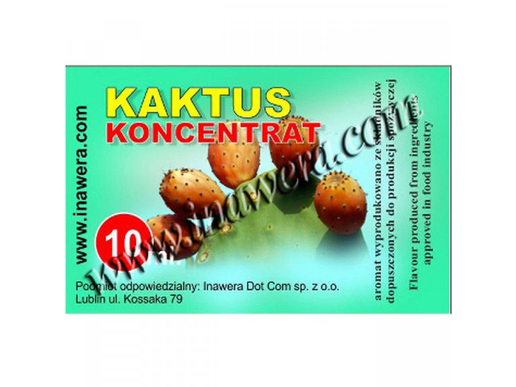 INW CACTUS / Kaktus