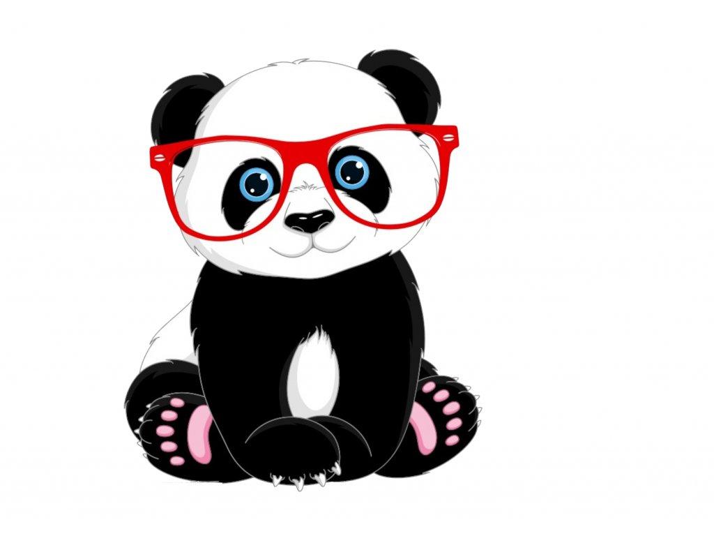 panda s brýlemi č.4
