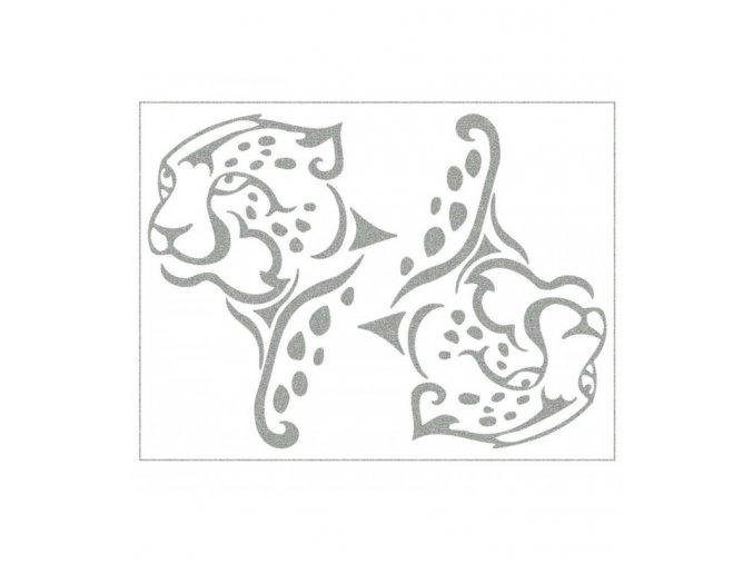 divoka priroda gepardi
