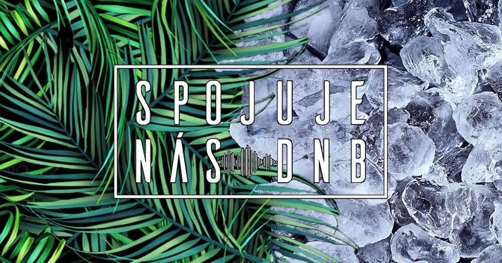 20.1.2018 CROSSCLUB TropicFrozenland | SNDNB & Bassound