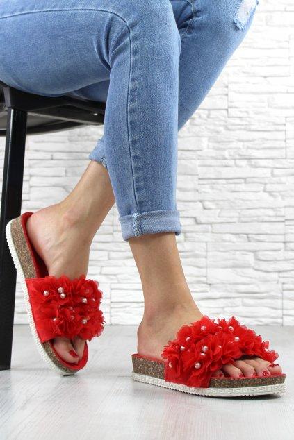 Pantofle BG58R (1)