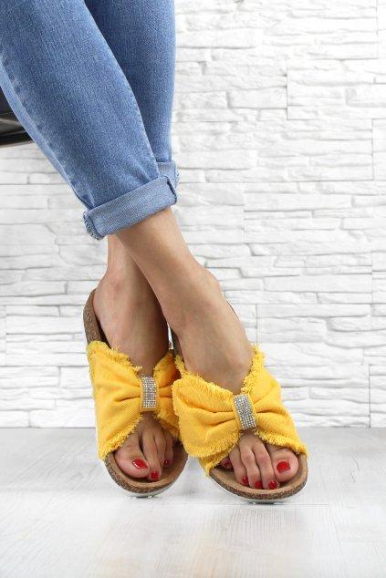 Dámské pantofle BG60YE (1)