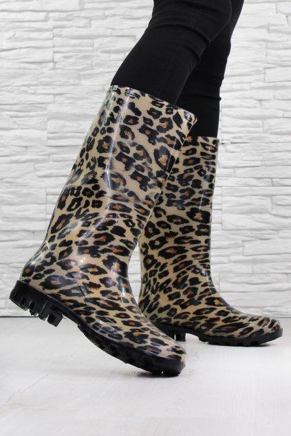 Holínky leopard HM 76 (1)