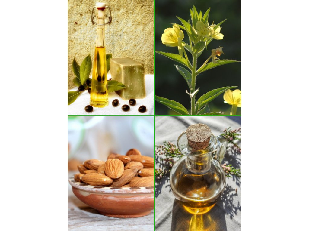 Rostlinné oleje v péči o pleť a výživě online kurz
