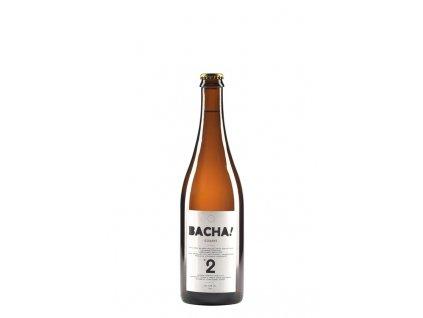 bacha 2