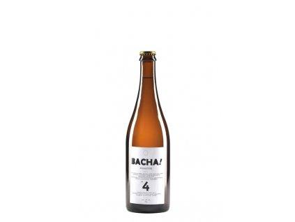 bacha 4