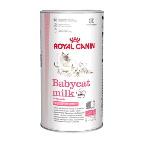 Mléko pro koťata