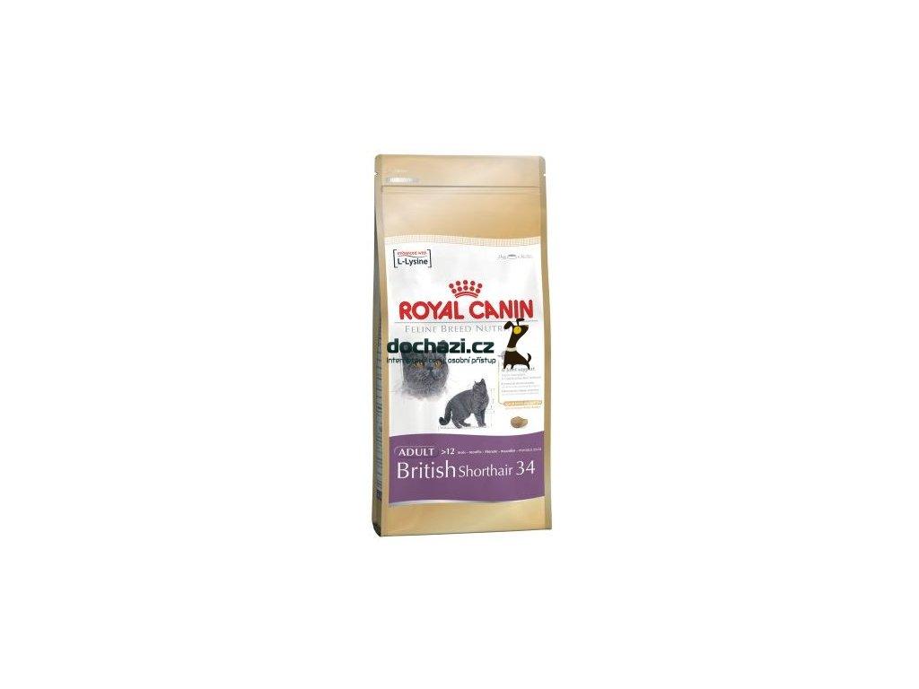 Royal Canin - BRITISH shorthair