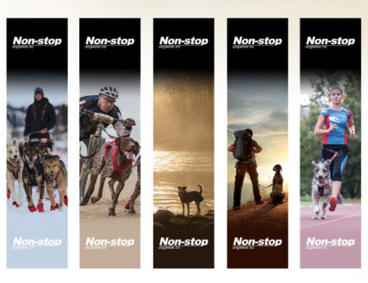 SPORTUJTE SE PSEM - venčení, chůze, běh, kolo, koloběžka, lyže, běžky, sáně