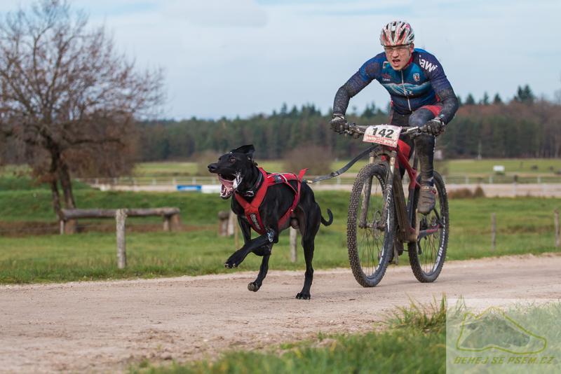 bikejoring-na-kolo-se-psem-non-stop-dogwear-01