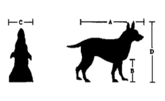 prepravka-box-navod-velikost-jak-spravne-zmerit-psa