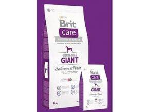 Brit Care Dog Grain-free Giant Salmon & Potato