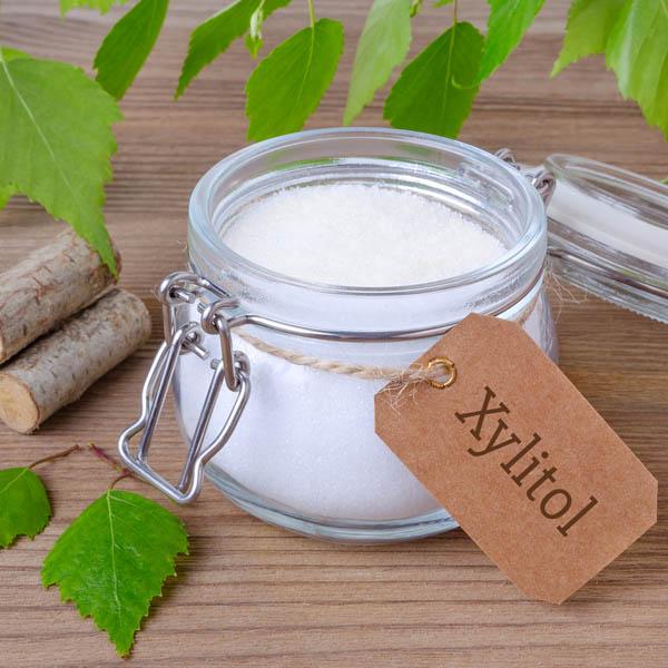 Xylitol (brezový cukor) - extrémne nebezpečný pre psy 03/2021