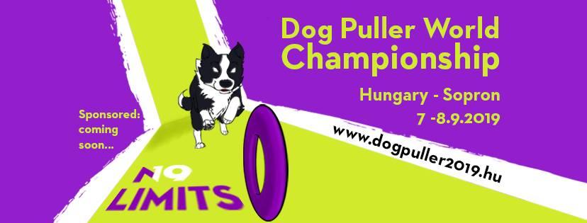 dog_puller_dogee_sopron_2019