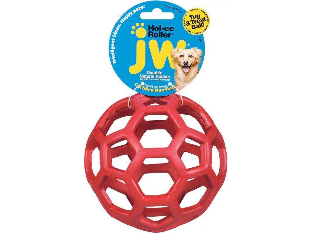 JW lopta pre psov medium