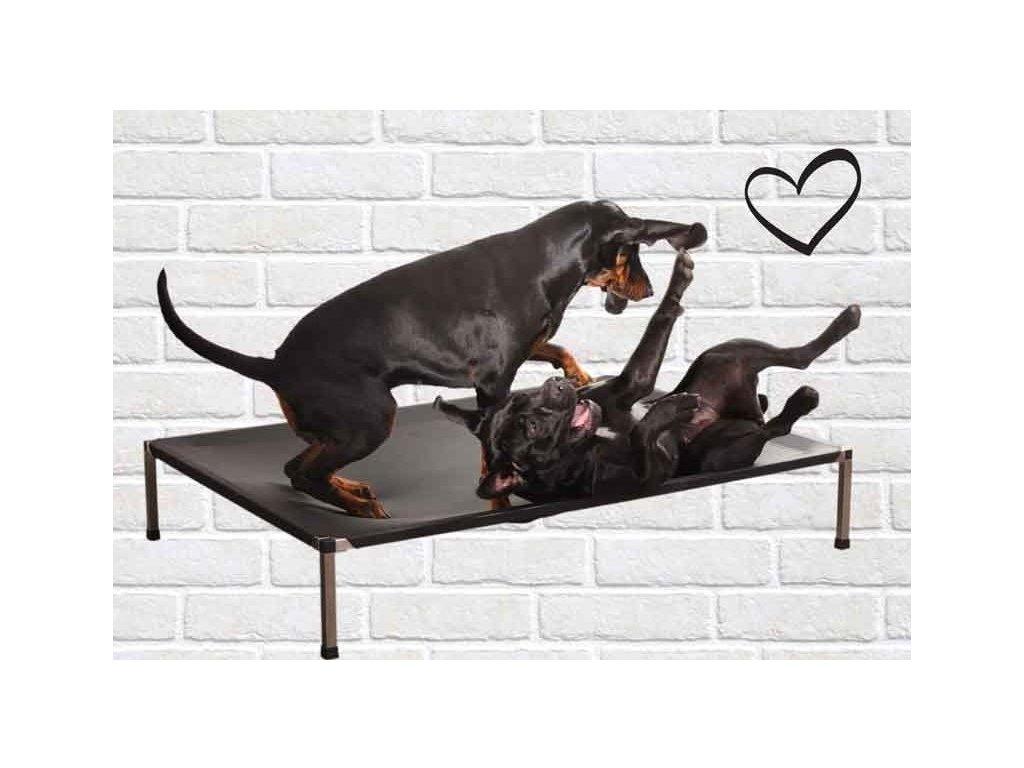 ležadlo pre psa