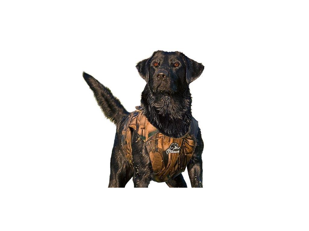 dokken s neoprenova vesta pre psov je velmi uzitocna pre pracu so psom v chladnejsich podmienkach alebo vo vode
