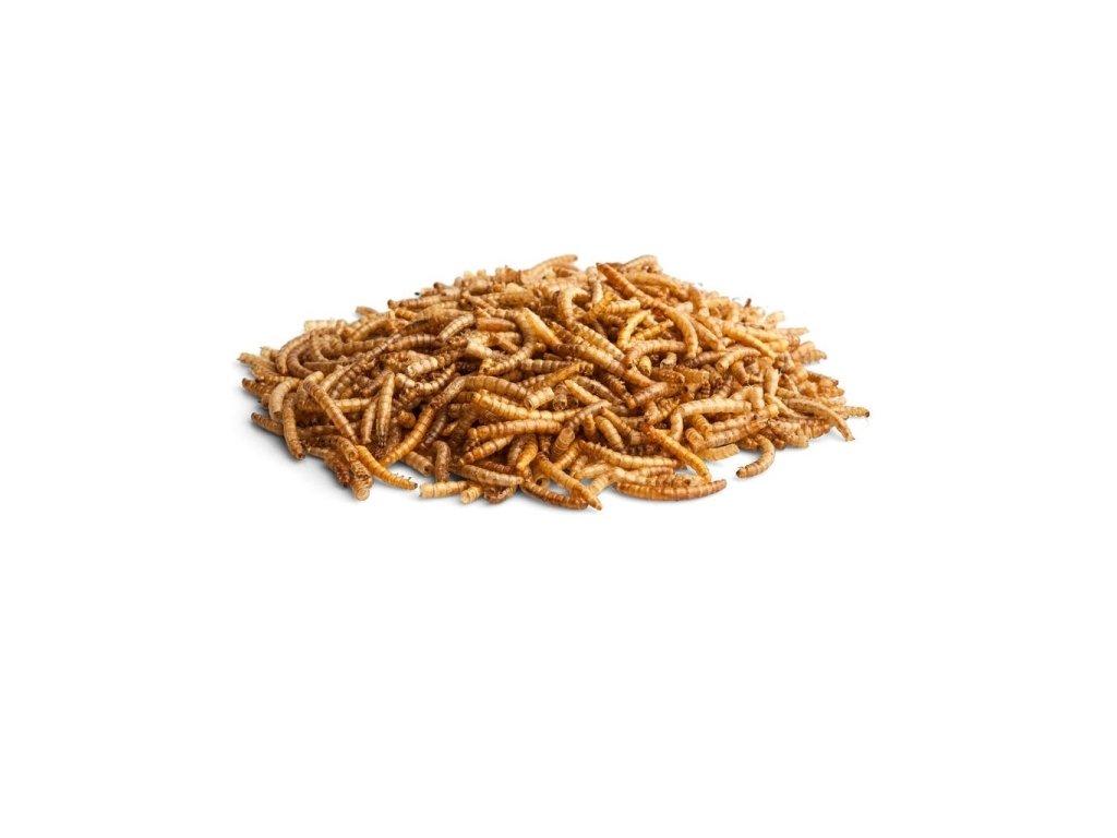 sušené múčne červy dogee
