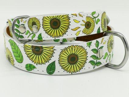kozeny obojok sunflowers dogee sk(2)