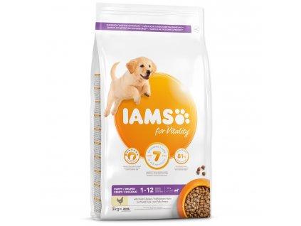 IAMS krmivo pre šteniatka Puppy Large Chicken